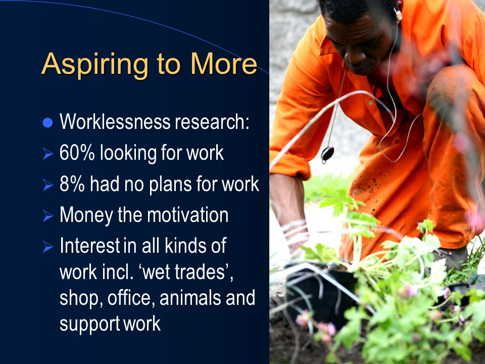 Aspiring to More Worklessness research:  60% looking for work  8% had no plans for work  Money the motivation  Interest in all kinds of work incl.