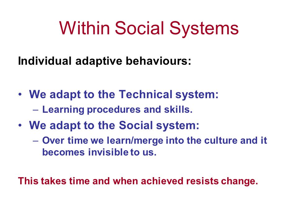 Within Social Systems Individual adaptive behaviours: We adapt to the Technical system: –Learning procedures and skills.