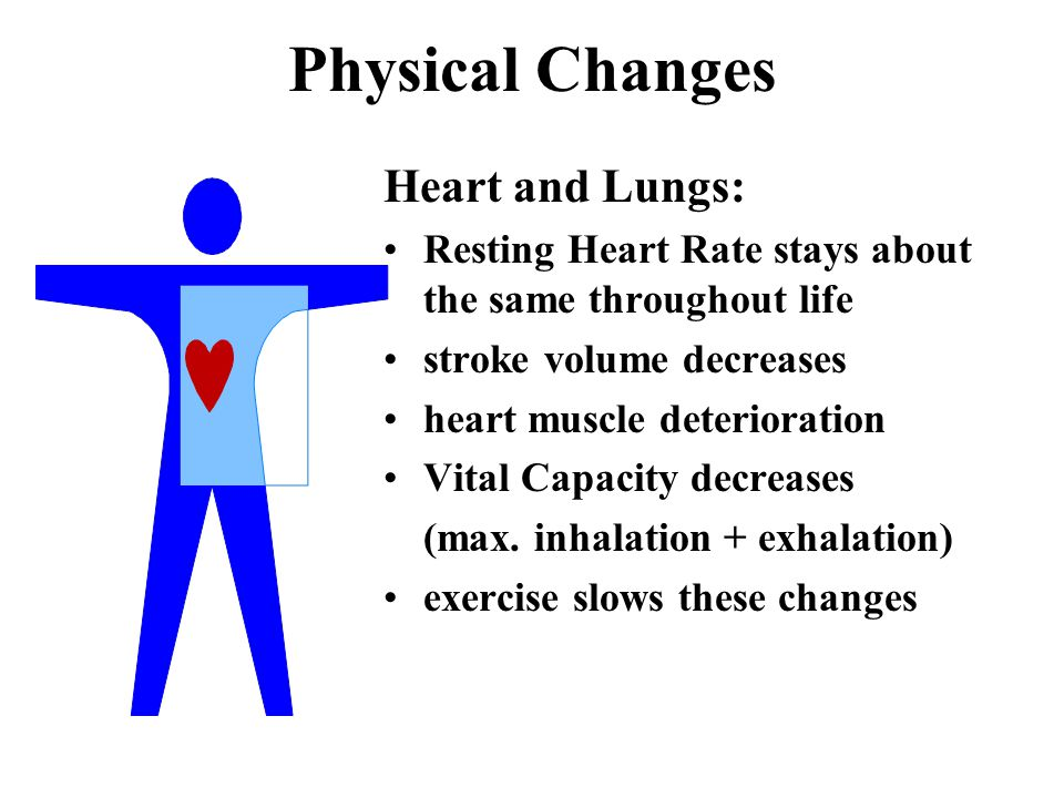 Physical Changes Heart and Lungs: Resting Heart Rate stays about the same throughout life stroke volume decreases heart muscle deterioration Vital Capacity decreases (max.