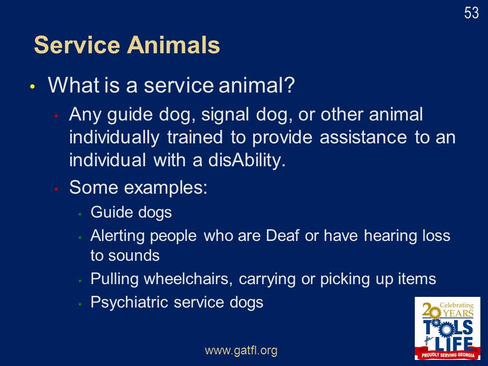 Service Animals What is a service animal? Any guide dog, signal dog, or other animal individually trained to provide assistance to an individual with