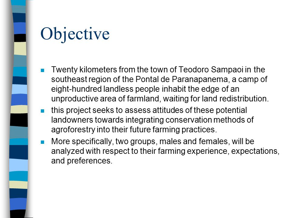 Objective n Twenty kilometers from the town of Teodoro Sampaoi in the southeast region of the Pontal de Paranapanema, a camp of eight-hundred landless people inhabit the edge of an unproductive area of farmland, waiting for land redistribution.
