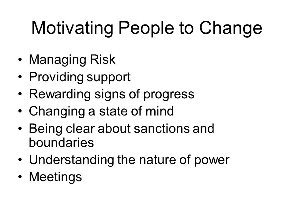 Motivating People to Change Managing Risk Providing support Rewarding signs of progress Changing a state of mind Being clear about sanctions and boundaries Understanding the nature of power Meetings