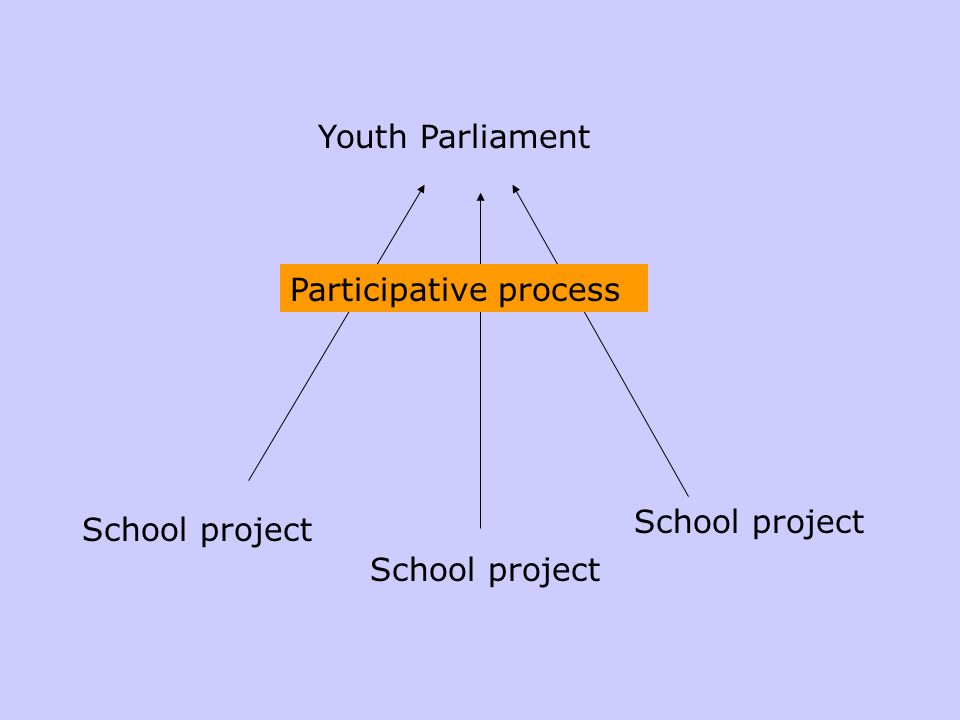 School project Youth Parliament School project Participative process