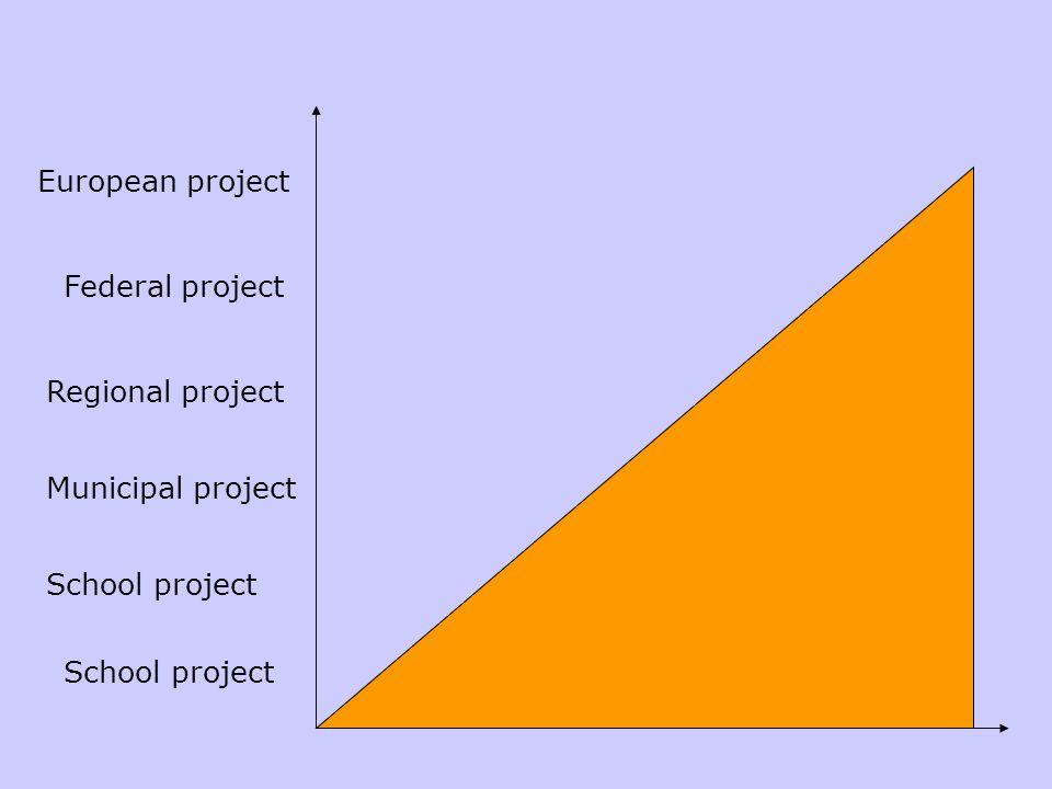 School project Regional project Federal project European project Municipal project School project