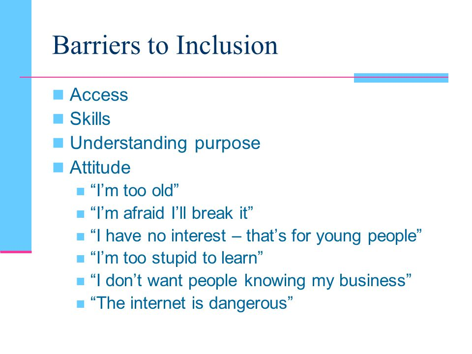 Barriers to Inclusion Access Skills Understanding purpose Attitude I'm too old I'm afraid I'll break it I have no interest – that's for young people I'm too stupid to learn I don't want people knowing my business The internet is dangerous