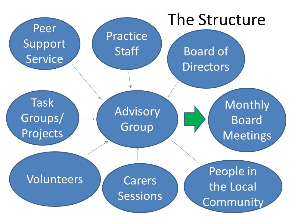 The Structure Advisory Group Peer Support Service Practice Staff Task Groups/ Projects Volunteers Carers Sessions People in the Local Community Board