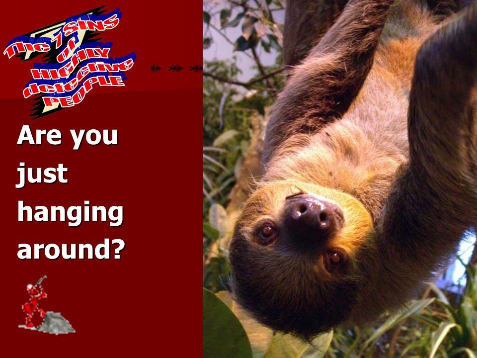 Sloth Are you justhangingaround?