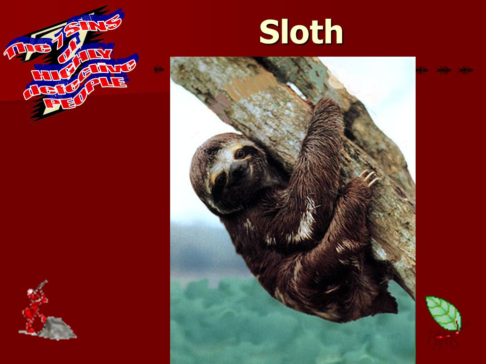 Sloth Proverbs 26: Proverbs 26: 16 The sluggard is wiser in his own eyes than seven men who answer discreetly Foolish