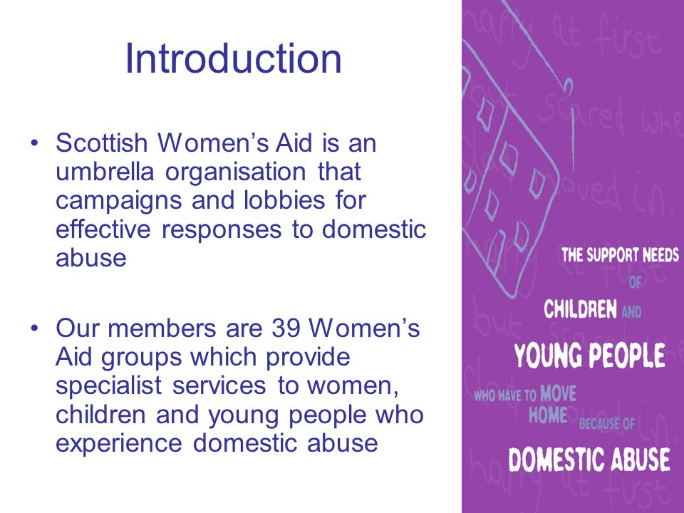Introduction Scottish Women's Aid is an umbrella organisation that campaigns and lobbies for effective responses to domestic abuse Our members are 39 Women's Aid groups which provide specialist services to women, children and young people who experience domestic abuse