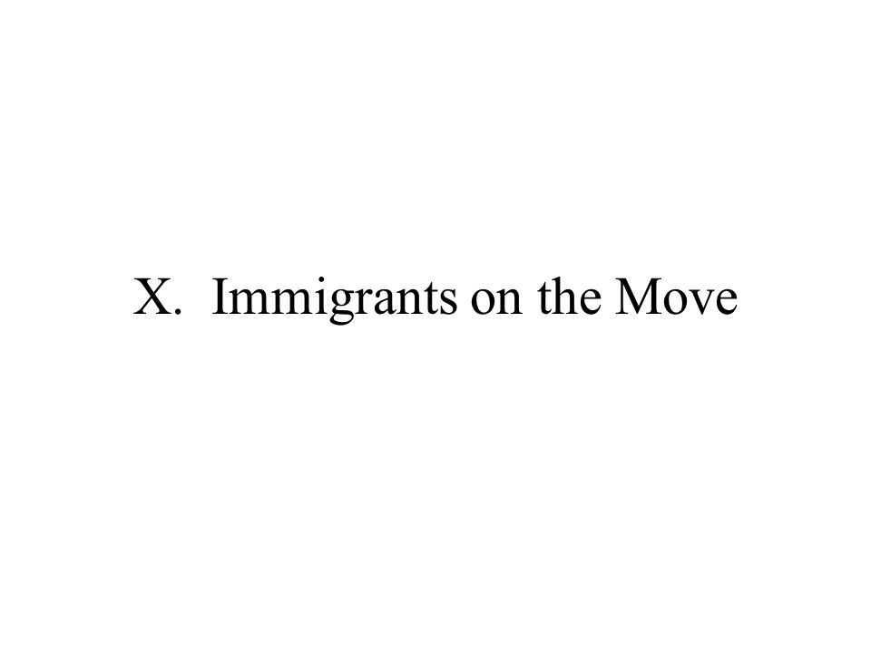 X. Immigrants on the Move
