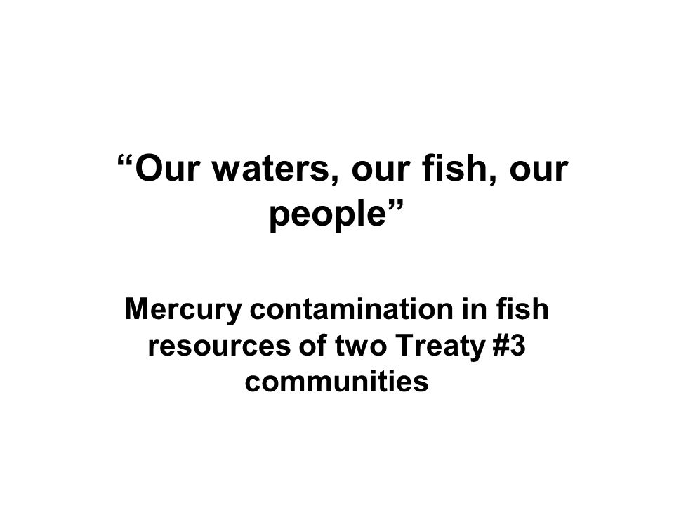 Our waters, our fish, our people Mercury contamination in fish resources of two Treaty #3 communities