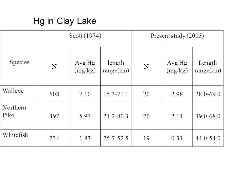 Hg in Clay Lake Species Scott (1974)Present study (2003) N Avg Hg (mg/kg) length range(cm) N Avg Hg (mg/kg) Length range(cm) Walleye 5087.1015.3-71.1202.9828.0-69.0 Northern Pike 4975.9721.2-80.3202.1439.0-68.0 Whitefish 2341.8325.7-52.5190.3144.0-54.0