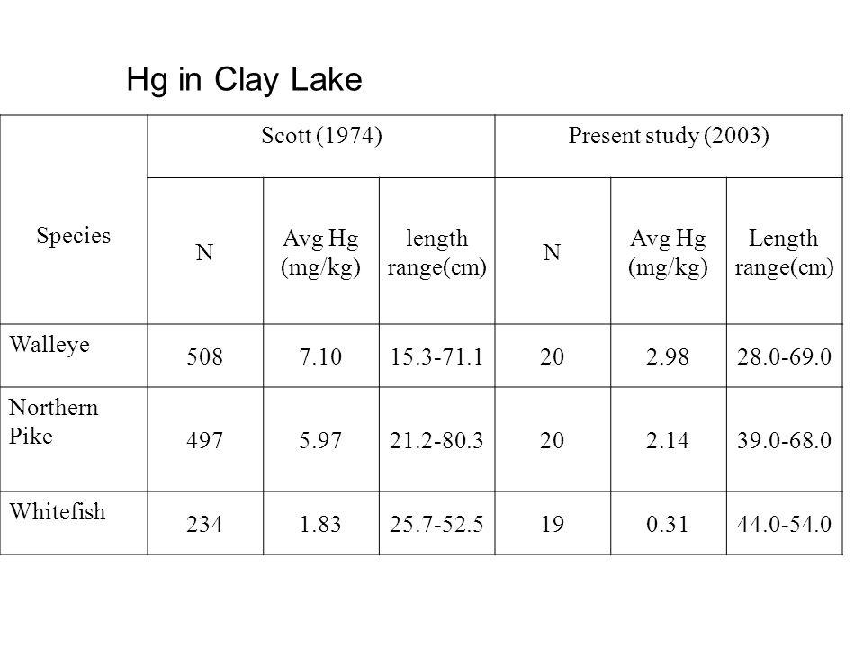 Hg in Clay Lake Species Scott (1974)Present study (2003) N Avg Hg (mg/kg) length range(cm) N Avg Hg (mg/kg) Length range(cm) Walleye 5087.1015.3-71.12