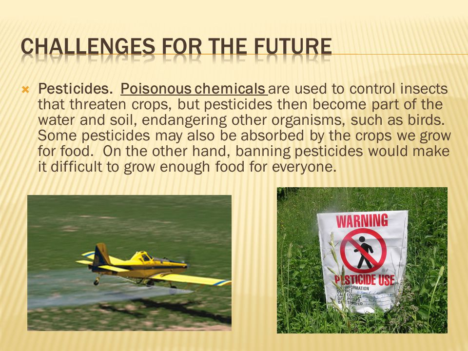  Pesticides. Poisonous chemicals are used to control insects that threaten crops, but pesticides then become part of the water and soil, endangering