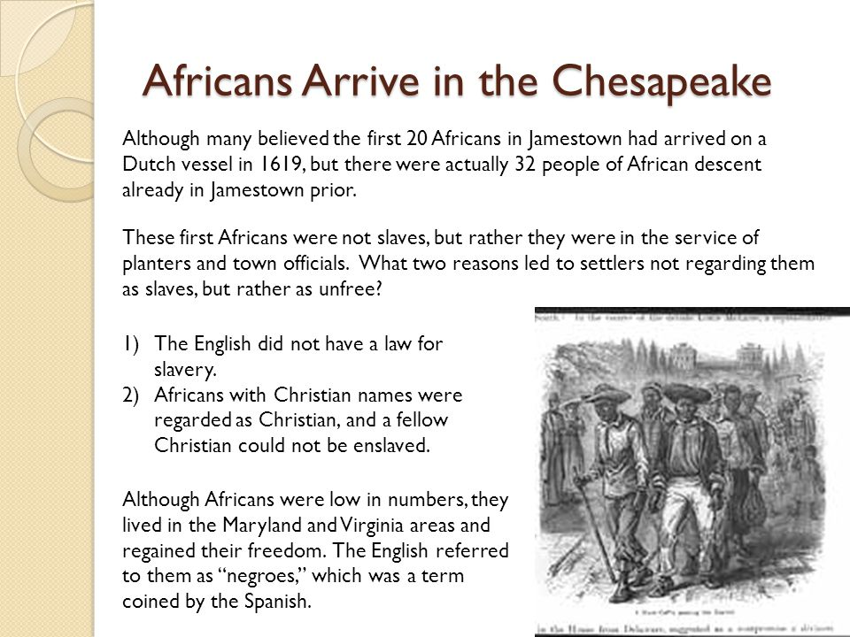 Africans Arrive in the Chesapeake Although many believed the first 20 Africans in Jamestown had arrived on a Dutch vessel in 1619, but there were actually 32 people of African descent already in Jamestown prior.