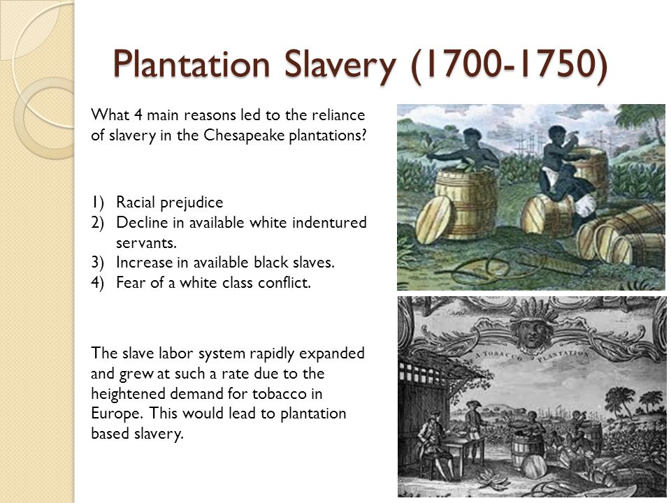 Plantation Slavery (1700-1750) What 4 main reasons led to the reliance of slavery in the Chesapeake plantations.
