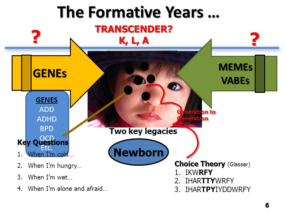 GENES ADD ADHD BPD OCD Etc. MEMEsVABEs The Formative Years … 6 TRANSCENDER? K, L, A Choice Theory Choice Theory (Glasser) 1.IKWRFY 2.IHARTTYWRFY 3.IHA