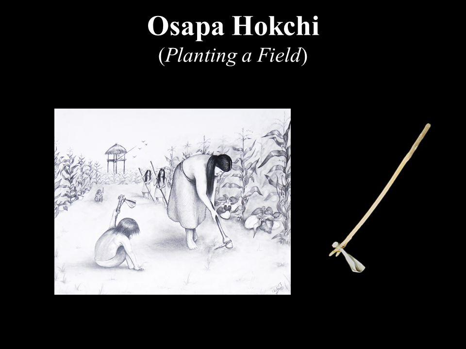 Osapa Hokchi (Planting a Field)