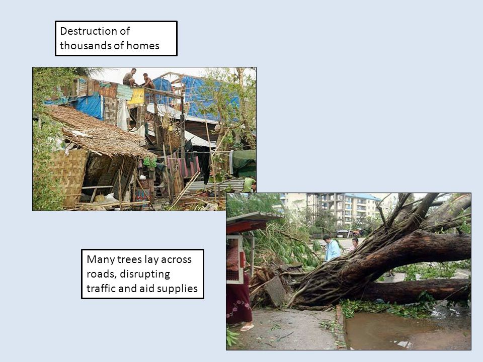 Destruction of thousands of homes Many trees lay across roads, disrupting traffic and aid supplies