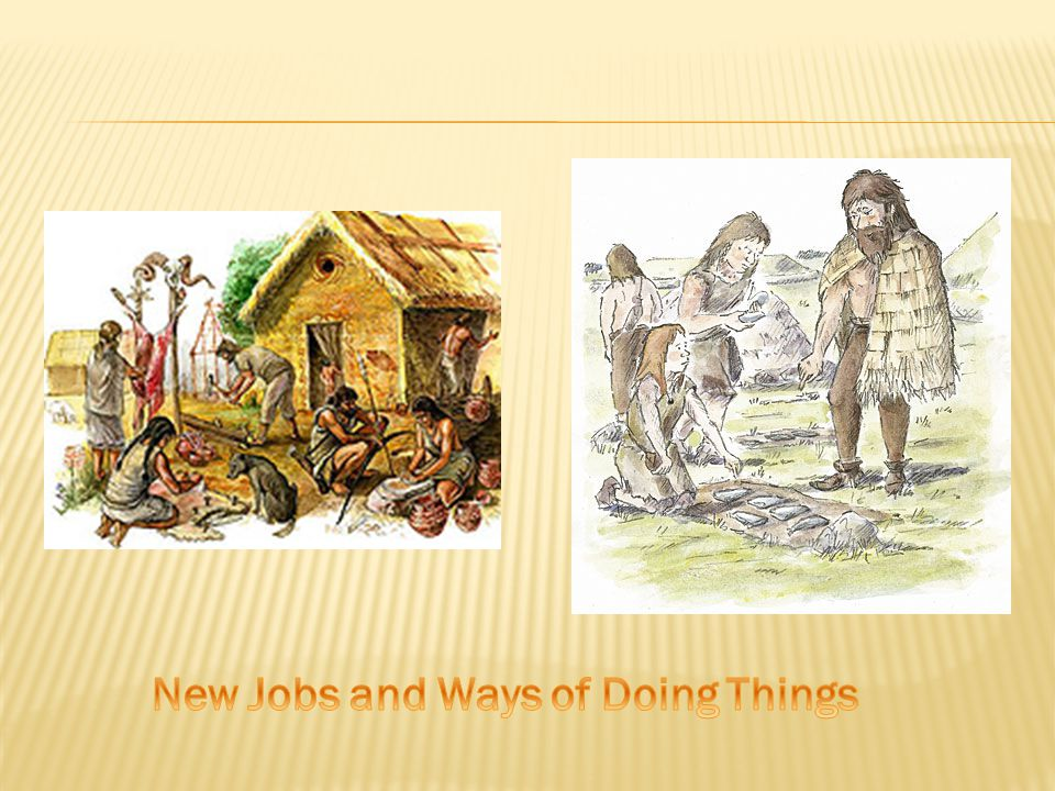  New Jobs/Specializations  As a result of having a stable food supply people had more time and opportunities to do things other than what had prior