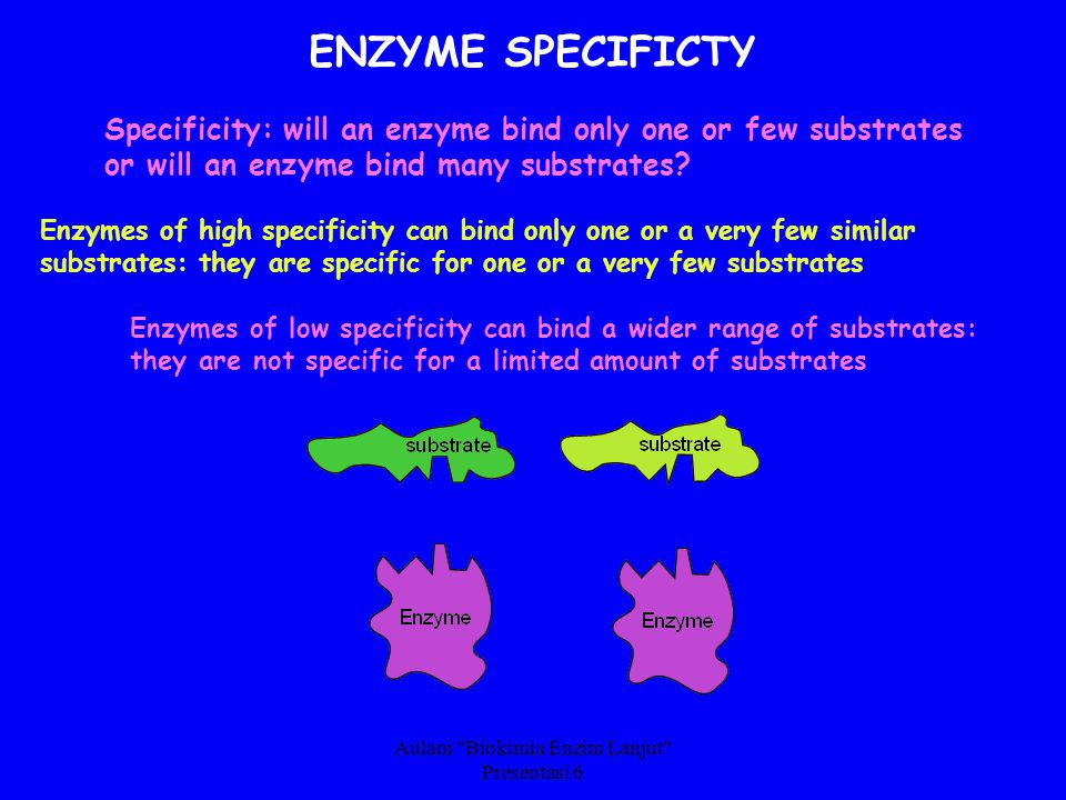 Aulani Biokimia Enzim Lanjut Presentasi 6 ENZYME SPECIFICTY Specificity: will an enzyme bind only one or few substrates or will an enzyme bind many substrates.