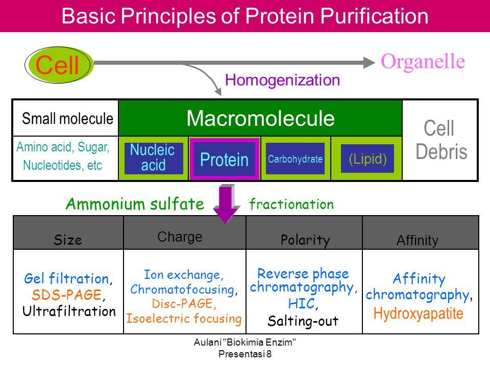 Aulani Biokimia Enzim Presentasi 8