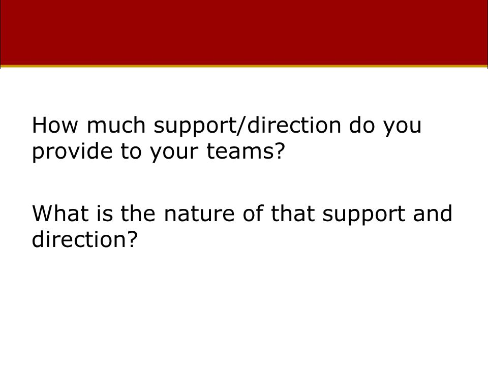 How much support/direction do you provide to your teams.