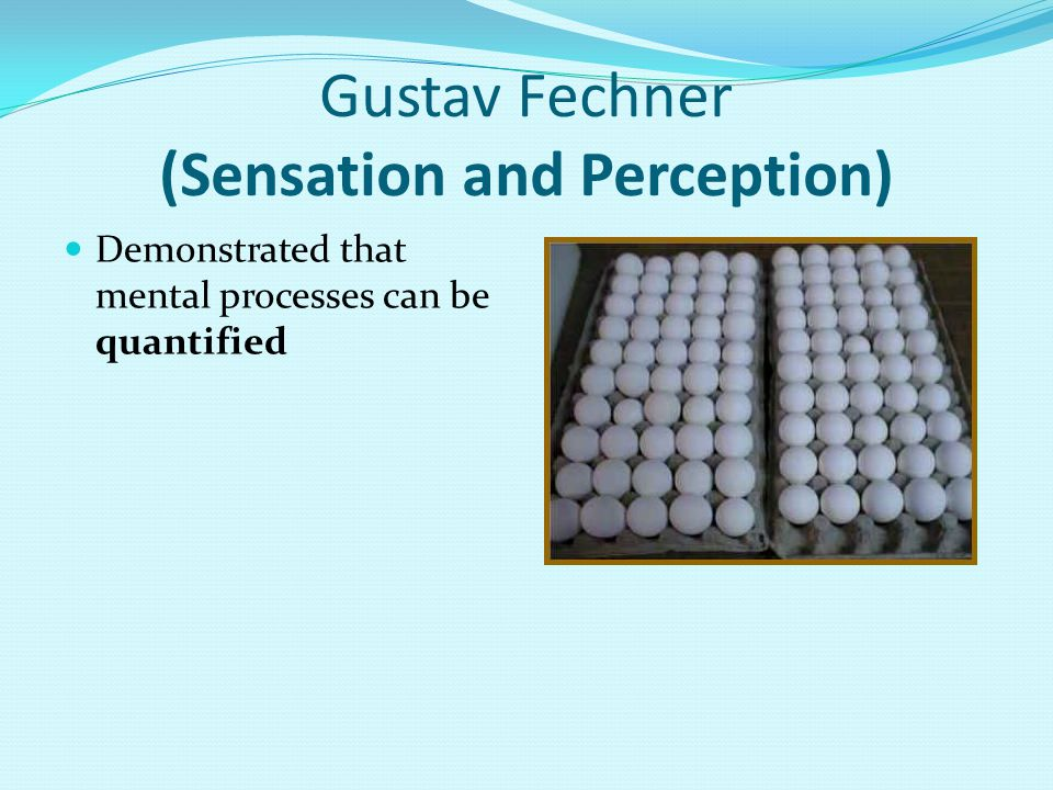 Gustav Fechner (Sensation and Perception) Demonstrated that mental processes can be quantified