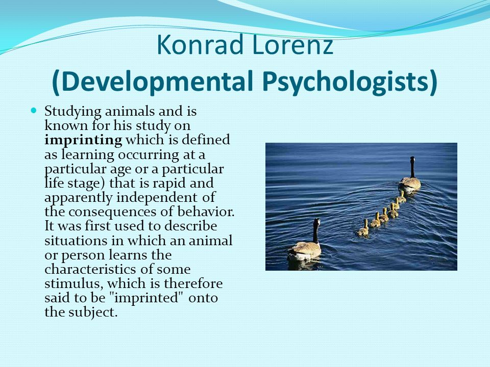 Konrad Lorenz (Developmental Psychologists) Studying animals and is known for his study on imprinting which is defined as learning occurring at a particular age or a particular life stage) that is rapid and apparently independent of the consequences of behavior.