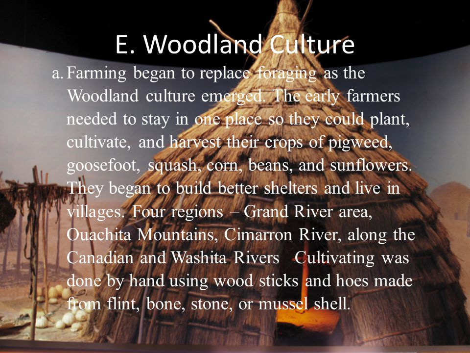 E. Woodland Culture a.Farming began to replace foraging as the Woodland culture emerged. The early farmers needed to stay in one place so they could p