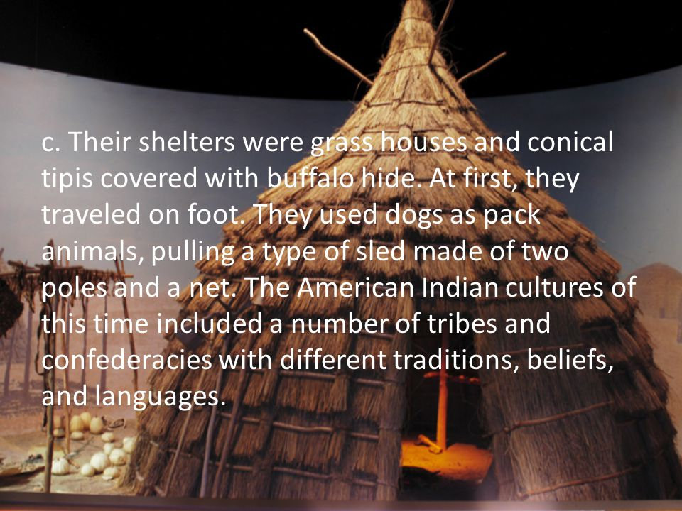 c. Their shelters were grass houses and conical tipis covered with buffalo hide. At first, they traveled on foot. They used dogs as pack animals, pull