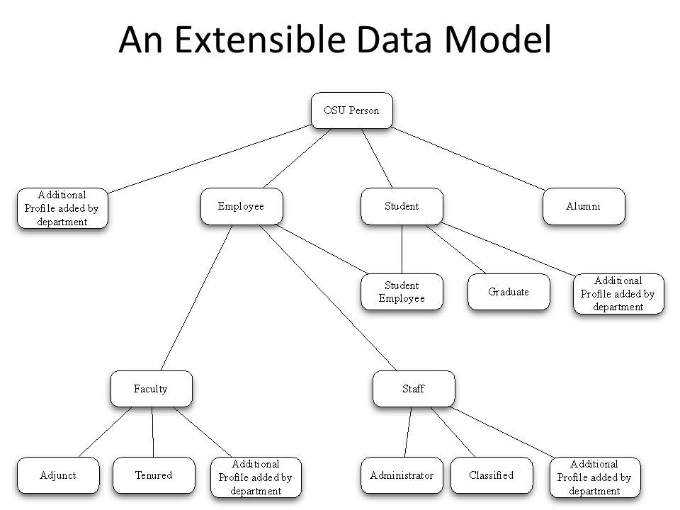 An Extensible Data Model