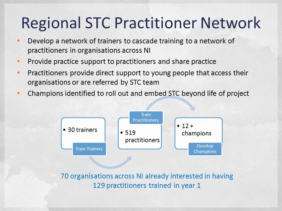 Regional STC Practitioner Network Develop a network of trainers to cascade training to a network of practitioners in organisations across NI Provide practice support to practitioners and share practice Practitioners provide direct support to young people that access their organisations or are referred by STC team Champions identified to roll out and embed STC beyond life of project 70 organisations across NI already interested in having 129 practitioners trained in year 1