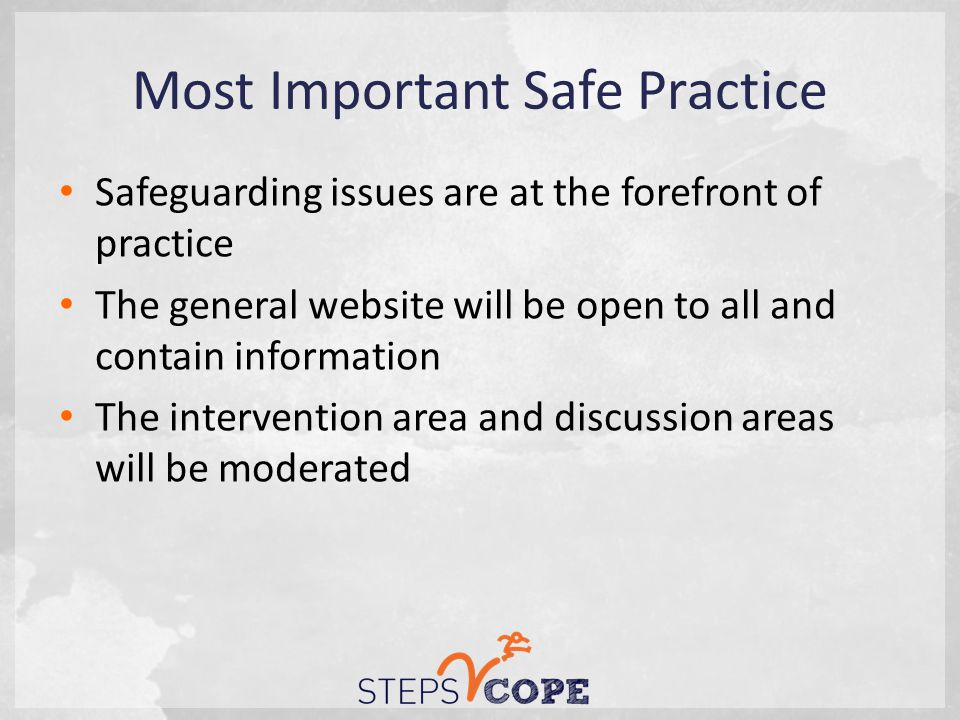 Most Important Safe Practice Safeguarding issues are at the forefront of practice The general website will be open to all and contain information The intervention area and discussion areas will be moderated