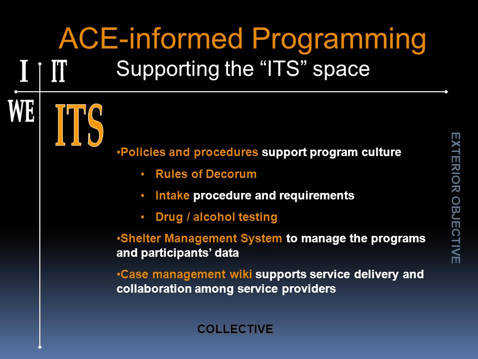 ACE-informed Programming Supporting the ITS space Policies and procedures support program culture Rules of Decorum Intake procedure and requirements Drug / alcohol testing Shelter Management System to manage the programs and participants' data Case management wiki supports service delivery and collaboration among service providers EXTERIOR OBJECTIVE COLLECTIVE
