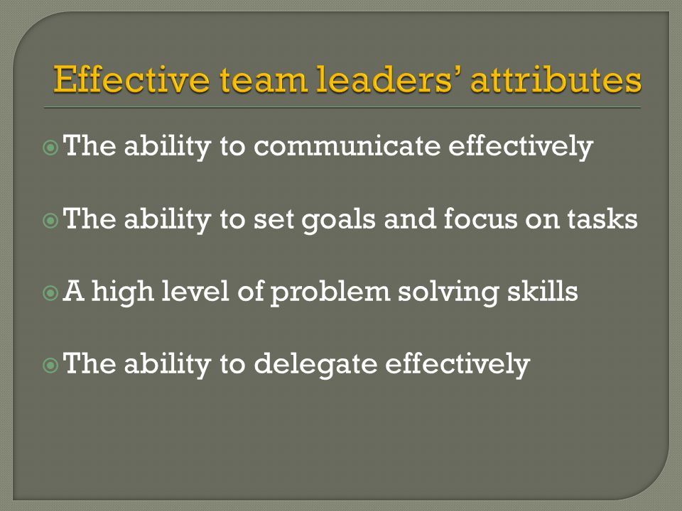  The ability to communicate effectively  The ability to set goals and focus on tasks  A high level of problem solving skills  The ability to deleg