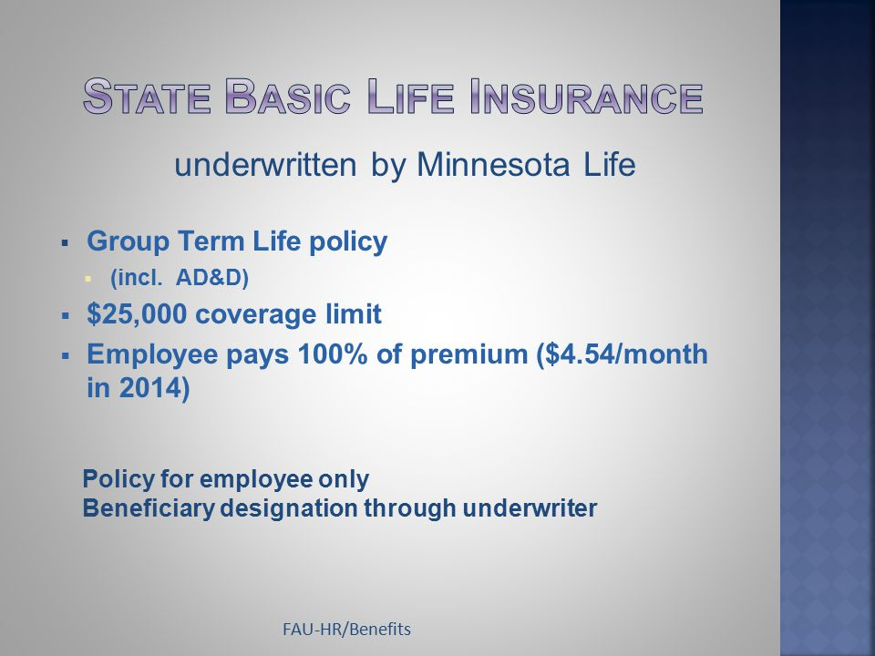  Group Term Life policy  (incl. AD&D)  $25,000 coverage limit  Employee pays 100% of premium ($4.54/month in 2014) Policy for employee only Benefi