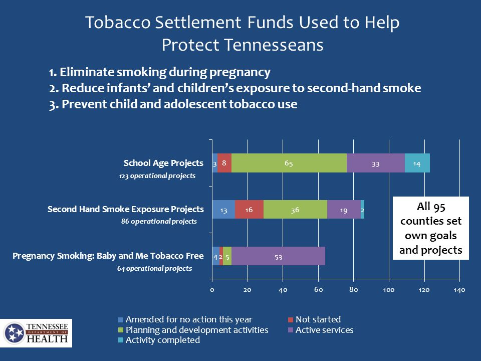 Tobacco Settlement Funds Used to Help Protect Tennesseans 1. Eliminate smoking during pregnancy 2. Reduce infants' and children's exposure to second-h