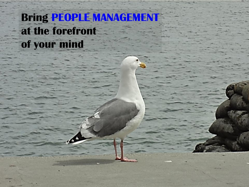 Bring PEOPLE MANAGEMENT at the forefront of your mind