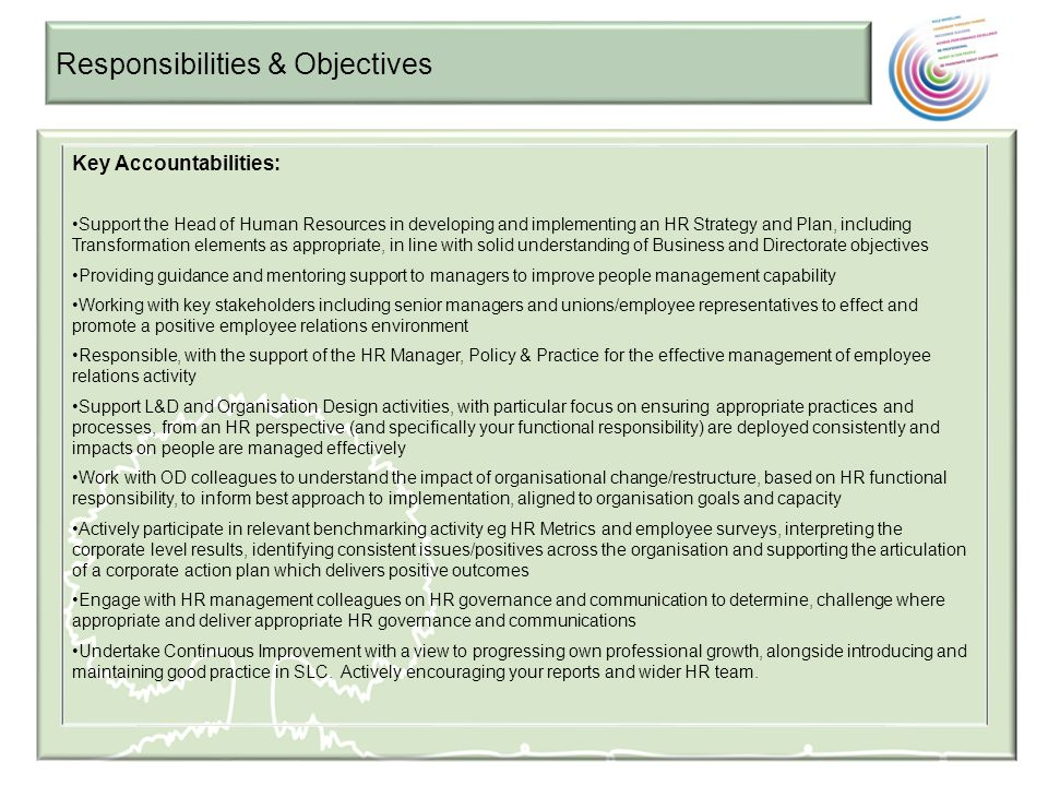 Responsibilities & Objectives Key Accountabilities: Support the Head of Human Resources in developing and implementing an HR Strategy and Plan, includ