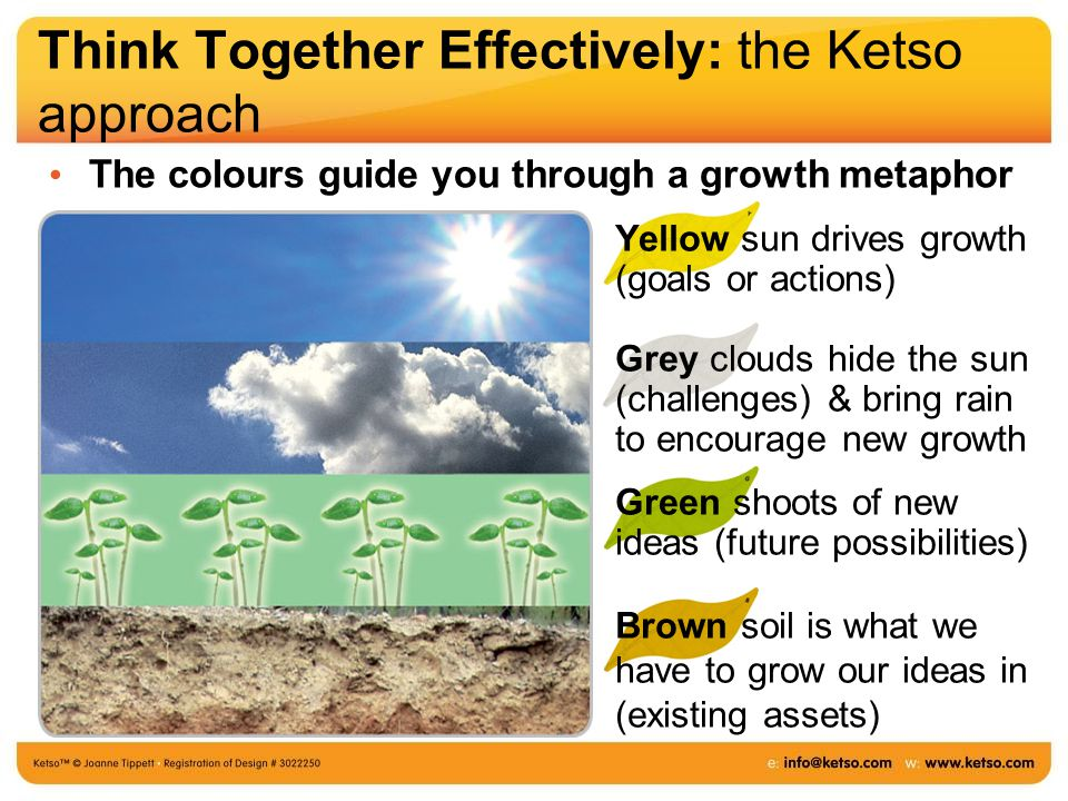 Think Together Effectively: the Ketso approach The colours guide you through a growth metaphor Yellow sun drives growth (goals or actions) Grey clouds hide the sun (challenges) & bring rain to encourage new growth Green shoots of new ideas (future possibilities) Brown soil is what we have to grow our ideas in (existing assets)