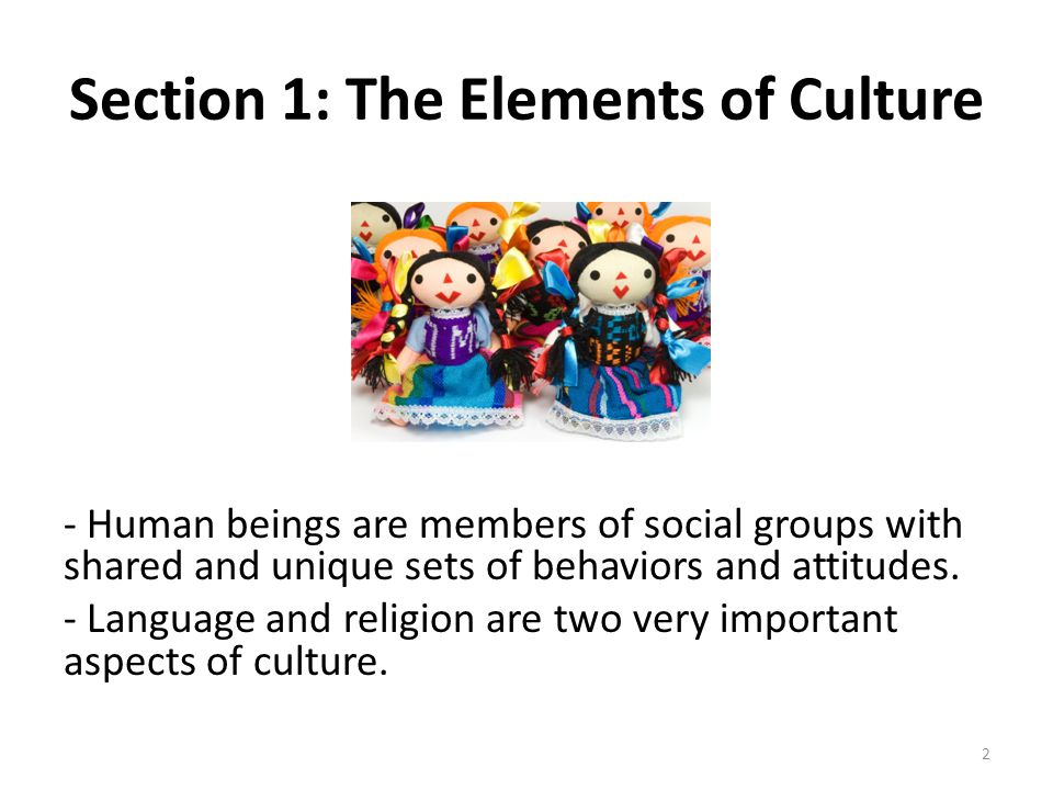 Section 1: The Elements of Culture - Human beings are members of social groups with shared and unique sets of behaviors and attitudes. - Language and