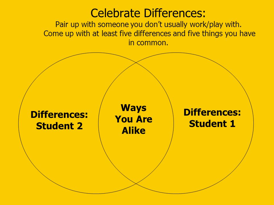 Celebrate Differences: Pair up with someone you don't usually work/play with.