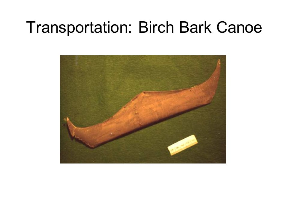 Transportation: Birch Bark Canoe