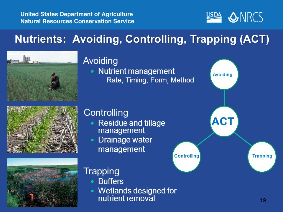 19 Avoiding Nutrient management Rate, Timing, Form, Method Controlling Residue and tillage management Drainage water management Trapping Buffers Wetlands designed for nutrient removal Nutrients: Avoiding, Controlling, Trapping (ACT) Avoiding Trapping Controlling ACT