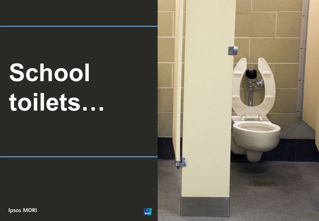 © Ipsos MORI School toilets…