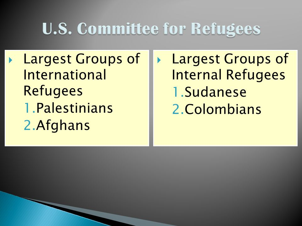  Largest Groups of International Refugees 1.Palestinians 2.Afghans  Largest Groups of Internal Refugees 1.Sudanese 2.Colombians