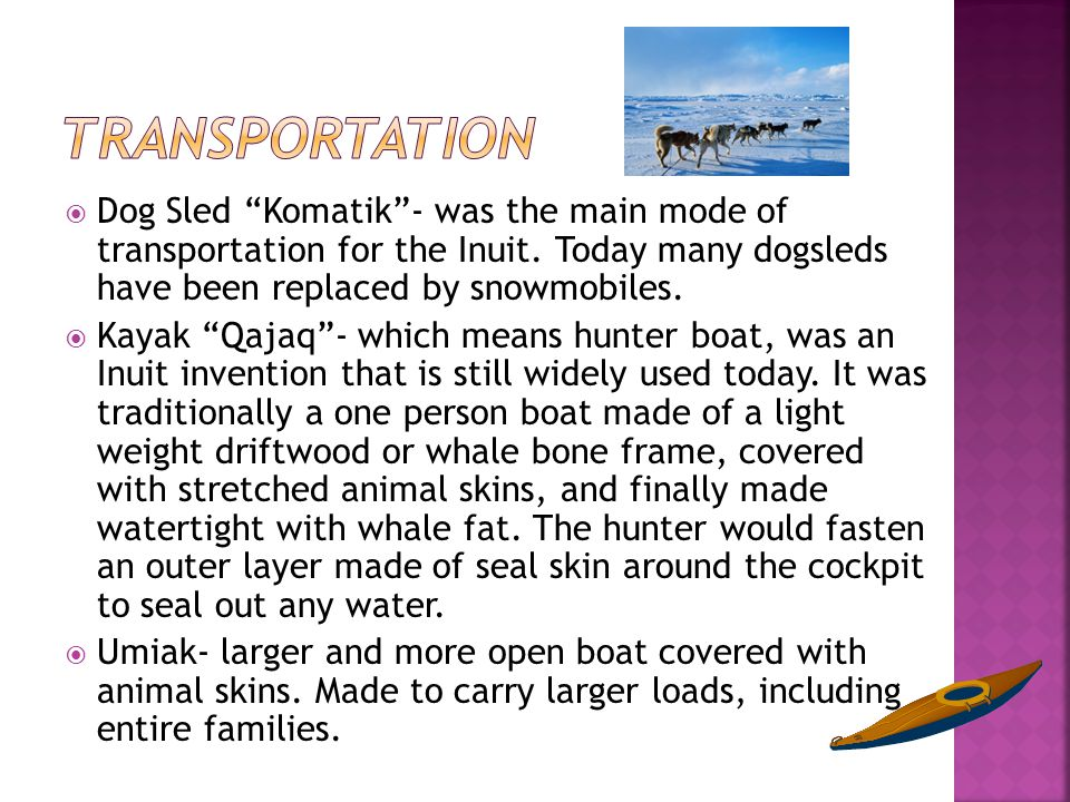 " Dog Sled ""Komatik""- was the main mode of transportation for the Inuit. Today many dogsleds have been replaced by snowmobiles.  Kayak ""Qajaq""- which"