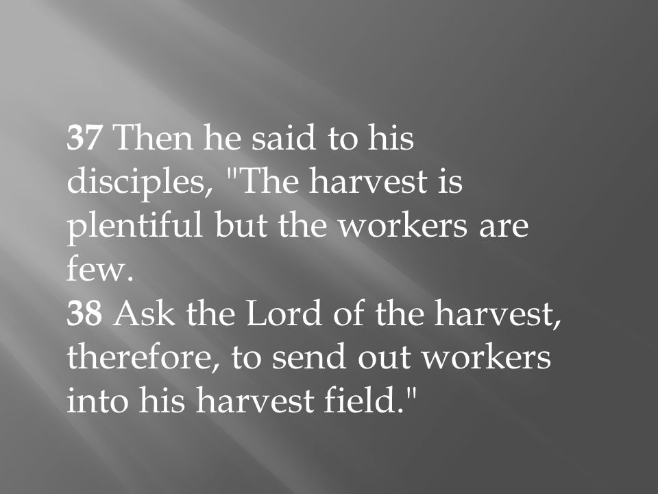 37 Then he said to his disciples, The harvest is plentiful but the workers are few.
