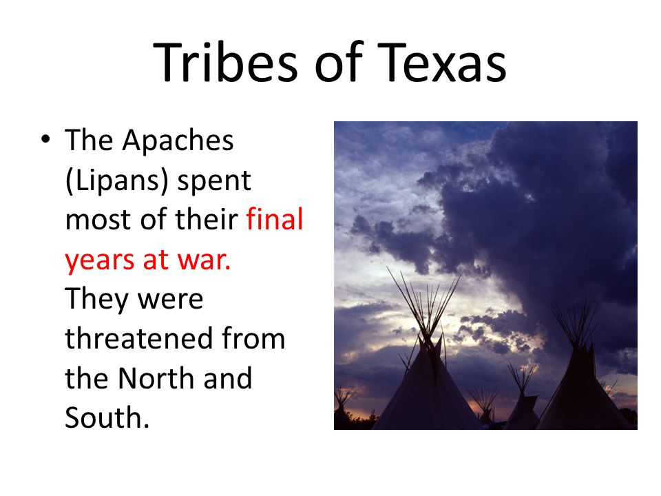 Tribes of Texas The Apaches (Lipans) spent most of their final years at war.